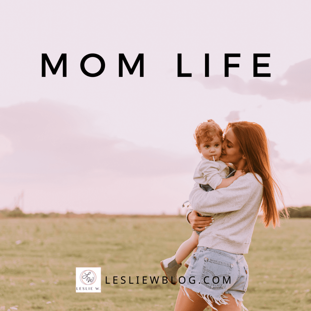 This image has an empty alt attribute; its file name is mom-life-main-image-1024x1024.png